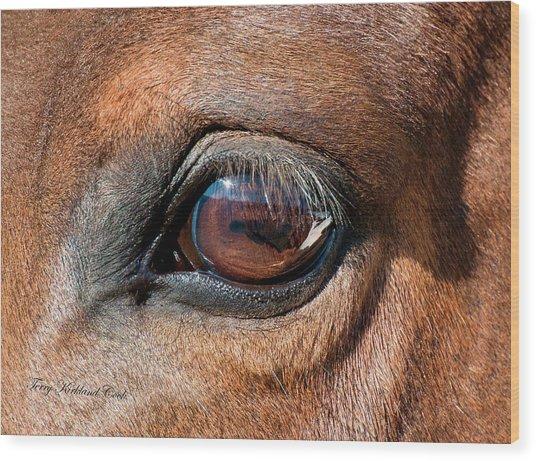 The Equine Eye Wood Print