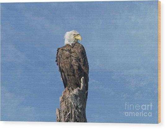 The Eye Of Freedom Wood Print