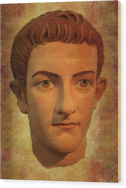 The Face Of Caligula Wood Print