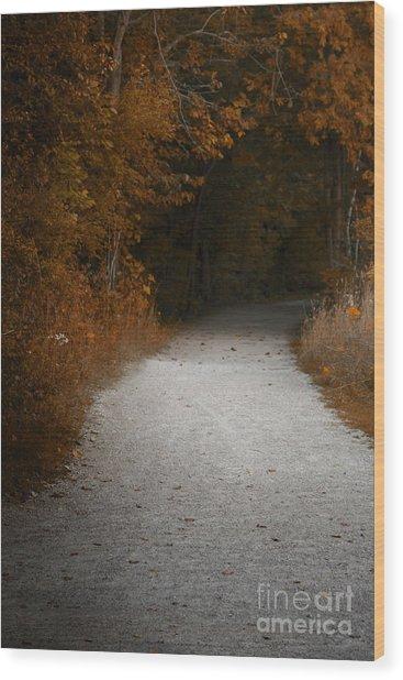 The Fall Path Wood Print