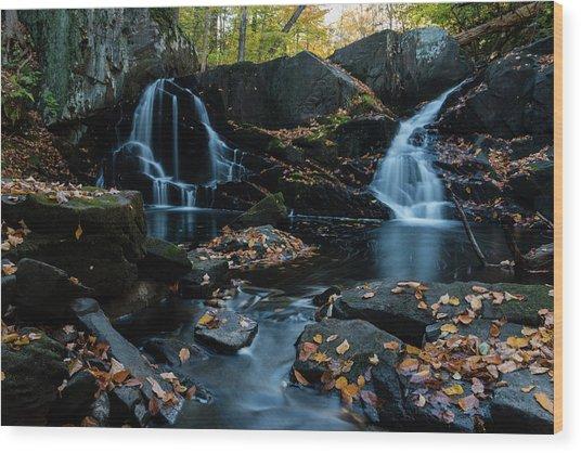The Falls Of Black Creek In Autumn IIi Wood Print
