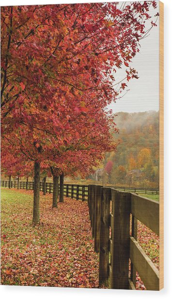 The Farm In Fall Wood Print by Sallie Woodring
