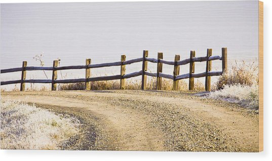 The Fence Wood Print