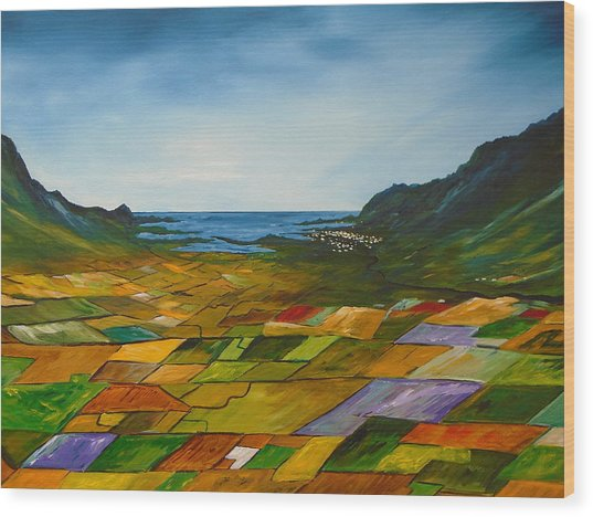 The Fields Of Dingle Wood Print