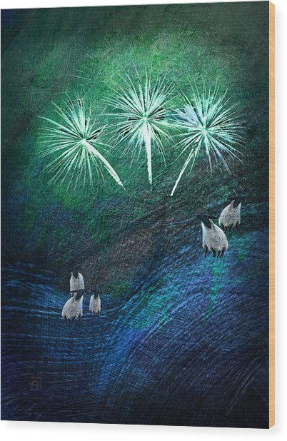 The Fireworks Are Starting Wood Print