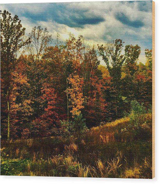 The First Days Of Fall Wood Print
