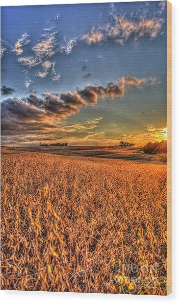 The Fleeting Sunset Missouri Soybean Farming Art  Wood Print