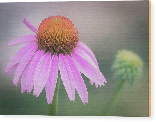 The Flower At Mattamuskeet Wood Print