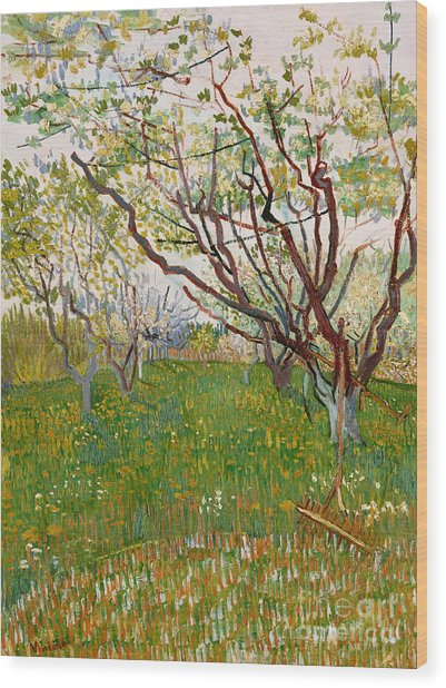 The Flowering Orchard, 1888 Wood Print