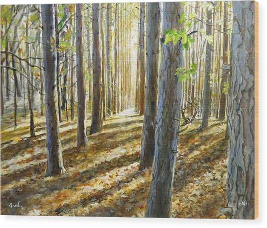 The Forest And The Trees Wood Print