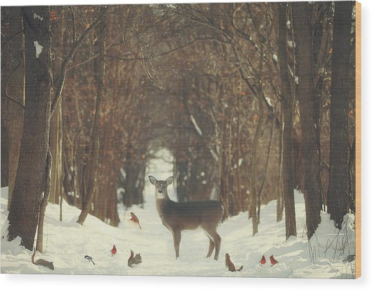 The Forest Of Snow White Wood Print