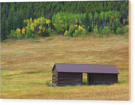 Wood Print featuring the photograph The Forgotten Barn by John De Bord