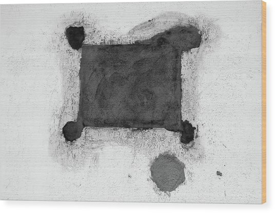 The Form Follows The Function  Wood Print