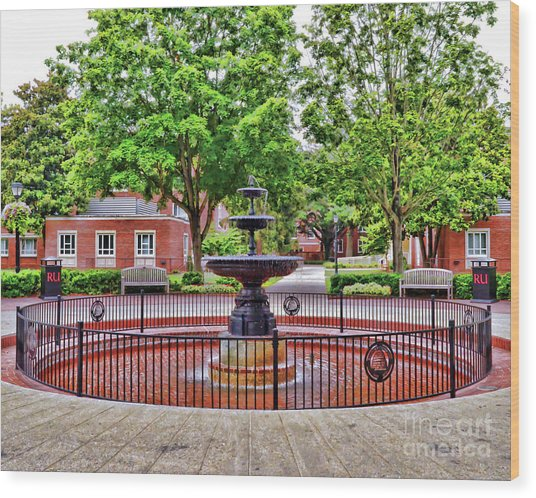 The Fountain At Radford University Wood Print