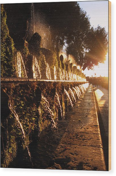 The Fountains Of Villa D'este Wood Print