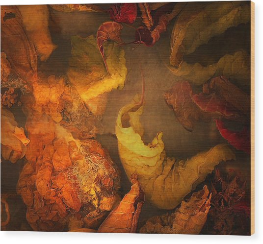 The Frail And Singular Fortress Of The Dissolving Self Wood Print by Peter Ciccariello