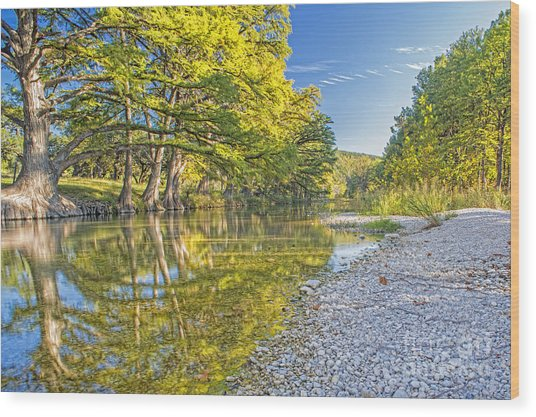 The Frio River In Concan Texas Wood Print by Andre Babiak