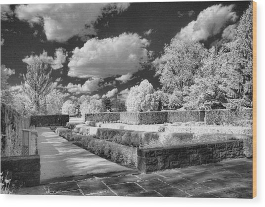 The Gardens In Ir Wood Print