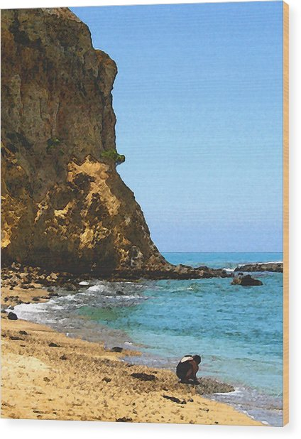 The Girl At Abalone Cove Wood Print