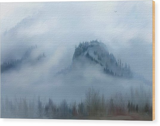 The Gorge In The Fog Wood Print