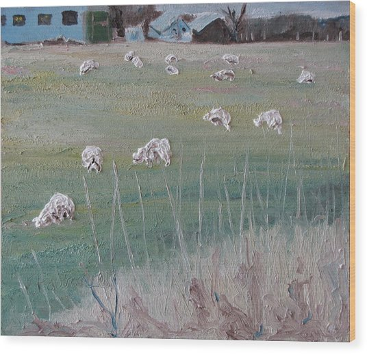 The Grazing Sheep Wood Print by Francois Fournier