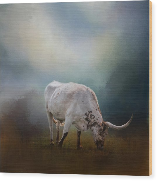 The Grazing Texas Longhorn Wood Print