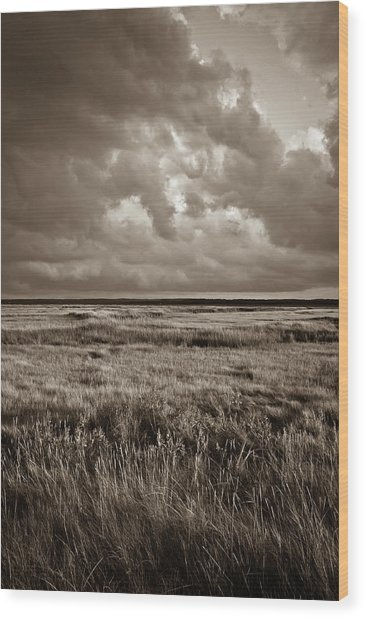 The Great Marsh Wood Print
