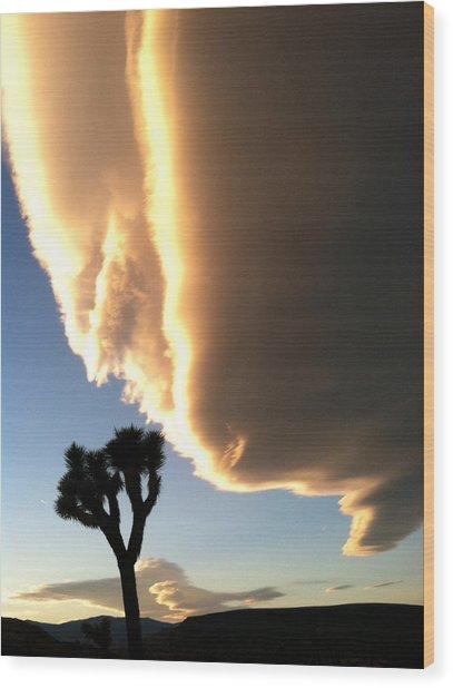 The Great Oz Wood Print by John Smolinski