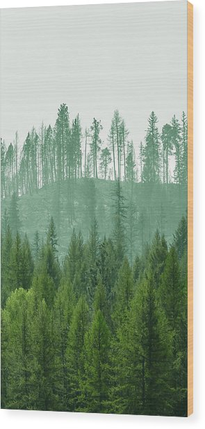 The Green And The Not So Green Wood Print