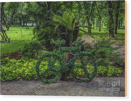 The Green Bicycle Wood Print