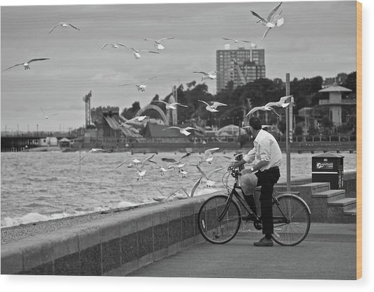 The Gull Man Wood Print