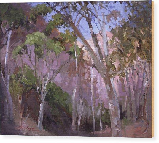 The Gum Grove Catalina Wood Print