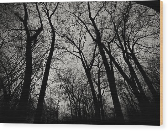The Haunt Of Winter Wood Print