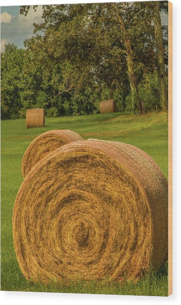Wood Print featuring the photograph The Hay Bales by Barry Jones
