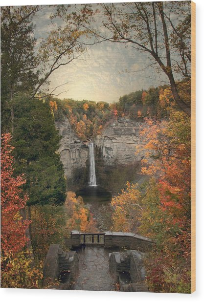 The Heart Of Taughannock Wood Print