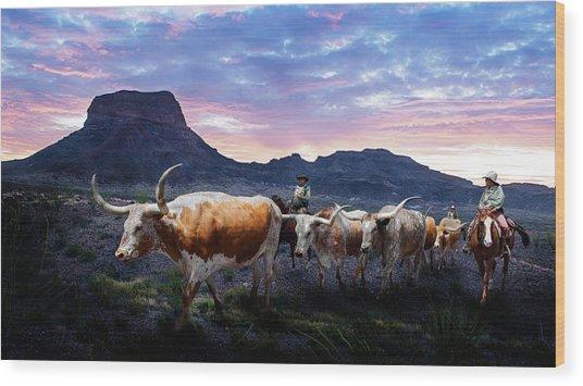 Texas Longhorns Blue Wood Print