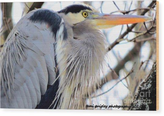 The Heron In Winter  Wood Print