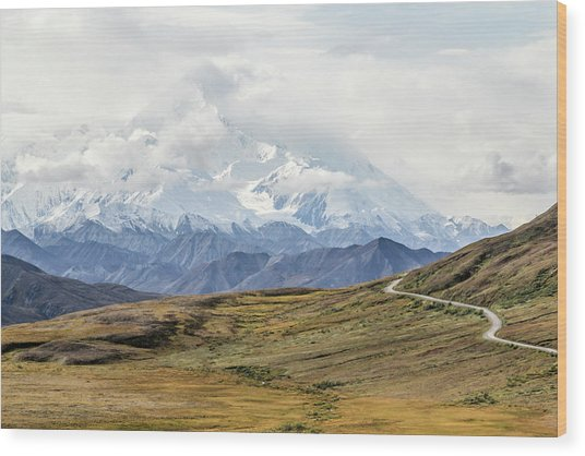 The High One - Denali Wood Print