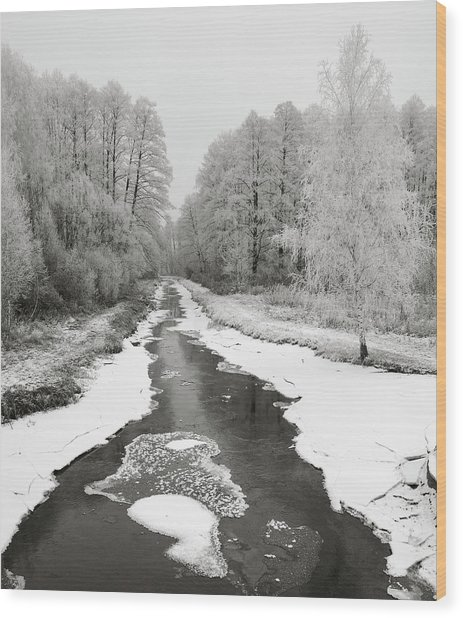 Wood Print featuring the photograph The Hoarfrost. Kuchynivka, 2014. by Andriy Maykovskyi