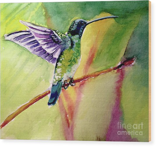 The Hummingbird Wood Print
