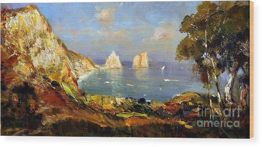 The Island Of Capri And The Faraglioni Wood Print