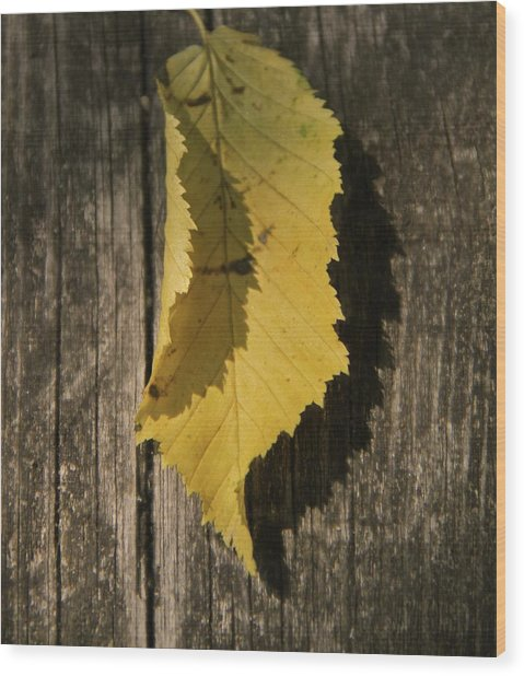 The Jagged Edge Wood Print by Odd Jeppesen
