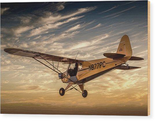 The Joy Of Flight Wood Print