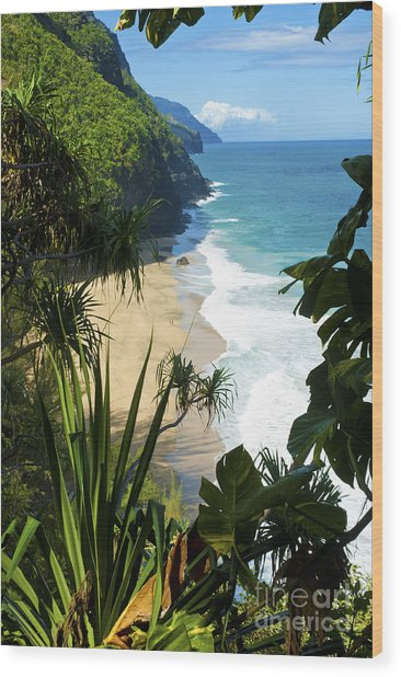 The Kalalau Trail Of Kauai Wood Print