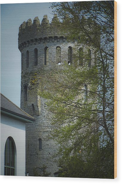 The Keep At Nenagh Castle Ireland Wood Print
