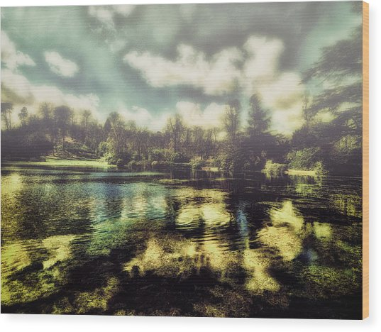 The Lake Wood Print