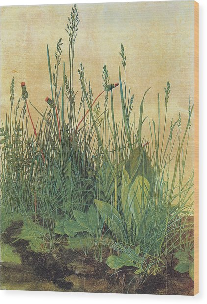 The Large Piece Of Turf Wood Print by Albrecht Durer