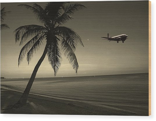The Last Flight Out Wood Print
