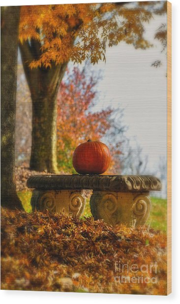 Wood Print featuring the photograph The Last Pumpkin by Lois Bryan