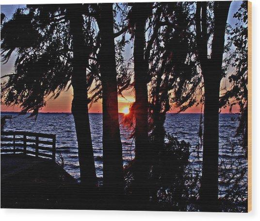 The Last Sun Wood Print